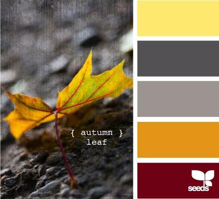 Autumn colors... Color & combination | color palette | color scheme Living room?