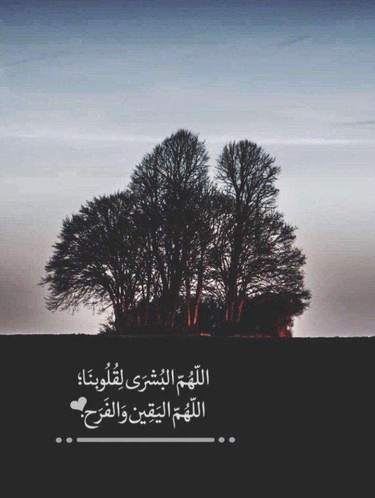 التوكل على الله صدق اليقين بالله Arabic Love Quotes Holy Quran Islamic Pictures