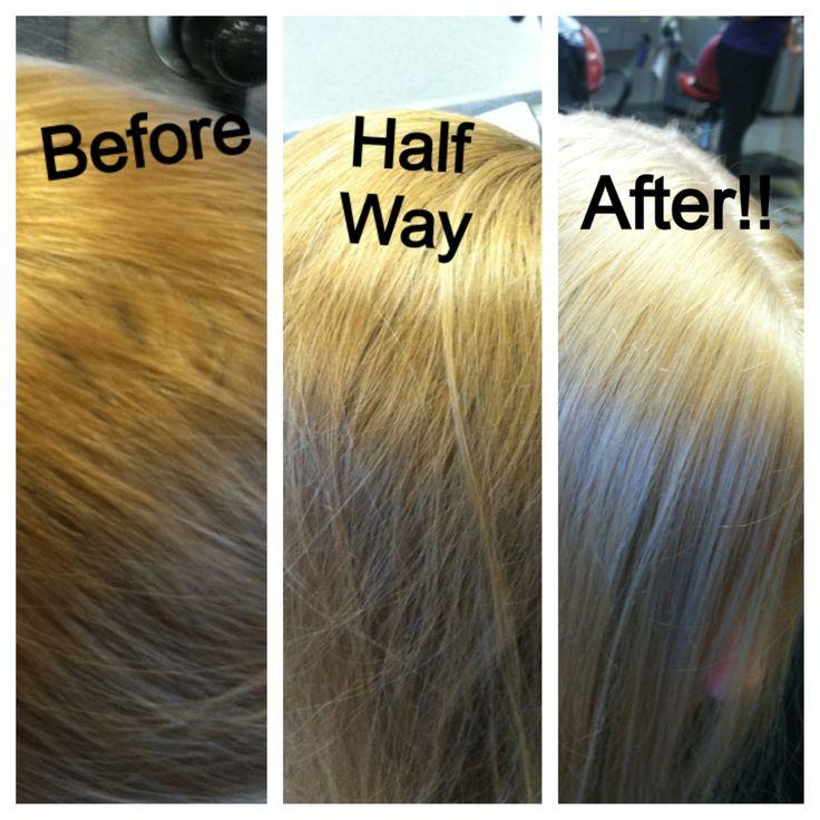 Single Process Blonde Hair Dark Brown Hairs
