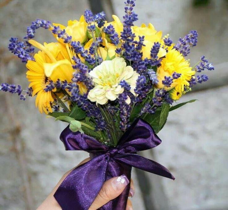 lavender  yellow