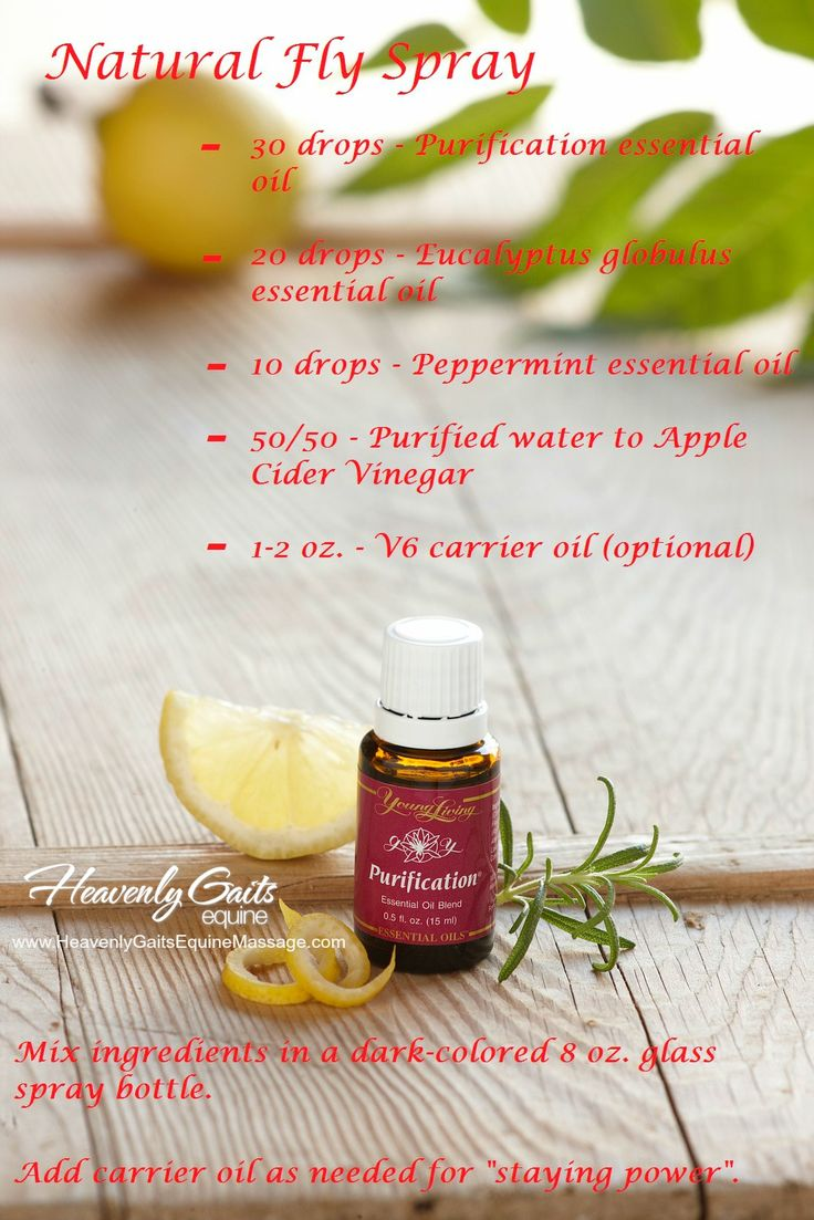 17 Best Ideas About Fly Spray On Pinterest Homemade Fly