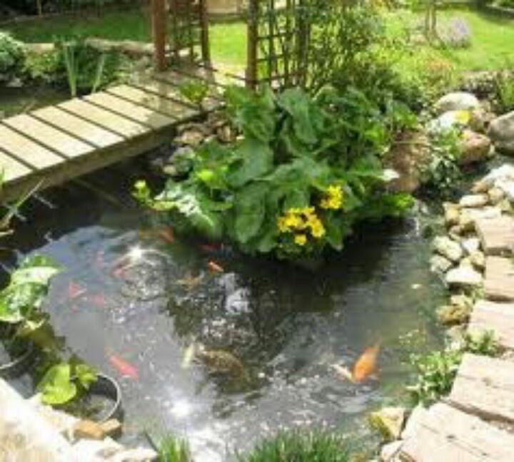 Koi pond with bridge yard pinterest koi ponds for Koi pond hiding places