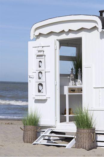 Long Island Maison