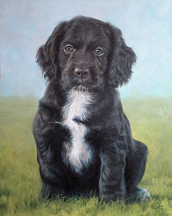 SAMPLE PET PORTRAIT Cocker Spaniel puppy, 16x20 inches size, FINEST QUALITY    Custom pet portraits as oil paintings on stretched canvas, from