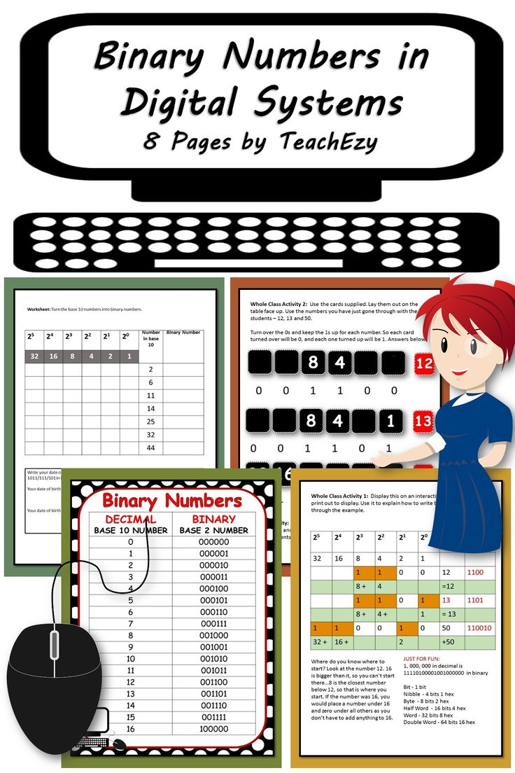 Binary Numbers In Digital Systems 8 Pages By Teachezy