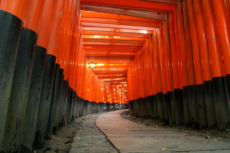 The Fushimi Inari Taisha a short train ride from downtown Kyoto. A must see.
