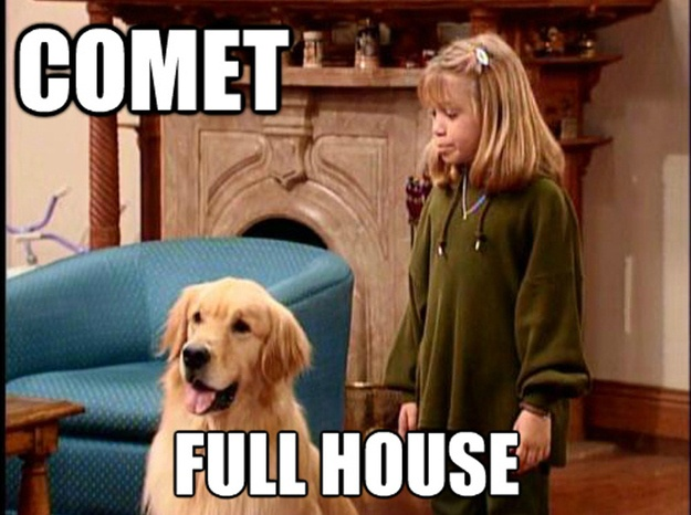Fun fact: After Full House, Buddy (who played Comet) went on to play Buddy in Air Bud (1997) and Air Bud: Golden Receiver (1998).