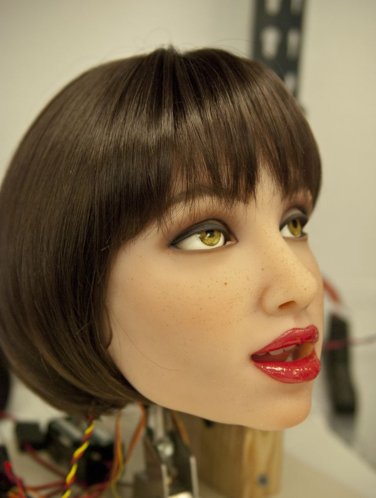 Sex doll manufacturers and independent roboticists are designing and building the first humanlike robots that people can have sex with.