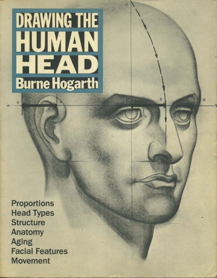 Burne hogarth -_drawing_the_human_head by Erdwin via slideshare