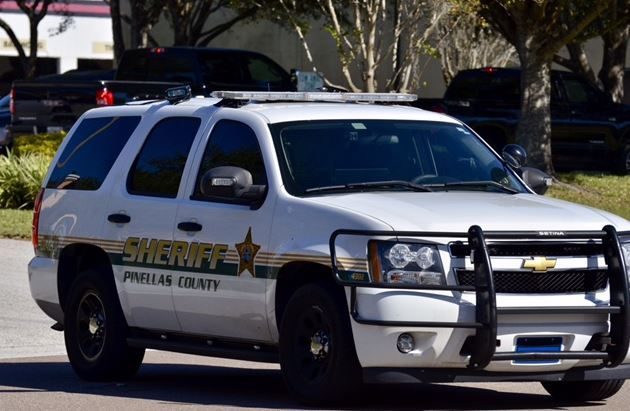 pinellas county criminal records
