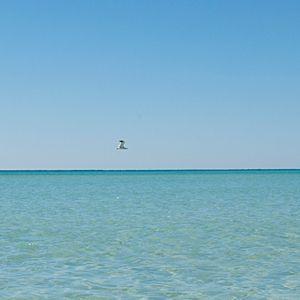 Pensacola, Florida | Coastalliving.com