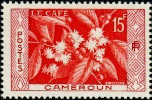 #CuriousCoffee En Camerún hay un sello que lleva la imagen de un #cafeto en flor