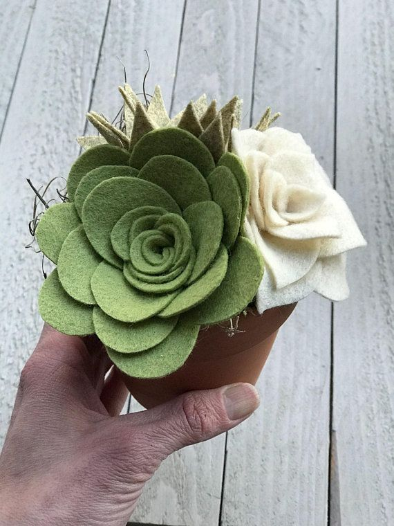Felt Succulents in a 3.5 inch Ceramic Pot pack filled with Spanish Moss. Measures approximately 7 inches tall. The cutest little plants that will never wilt away. All Felt Flowers are hand cut and made from 100% wool Felt. -CARE INSTRUCTIONS- Avoid Moisture. If necessary, spot clean