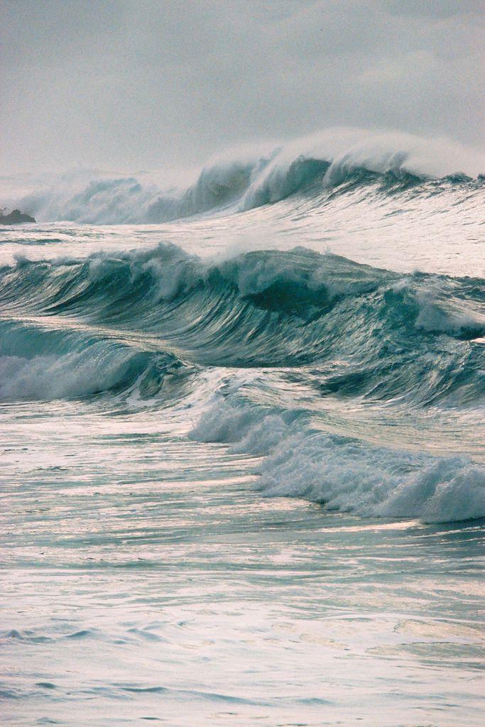 gyclli:   Waimea Shorebreak **by Chris Brunt