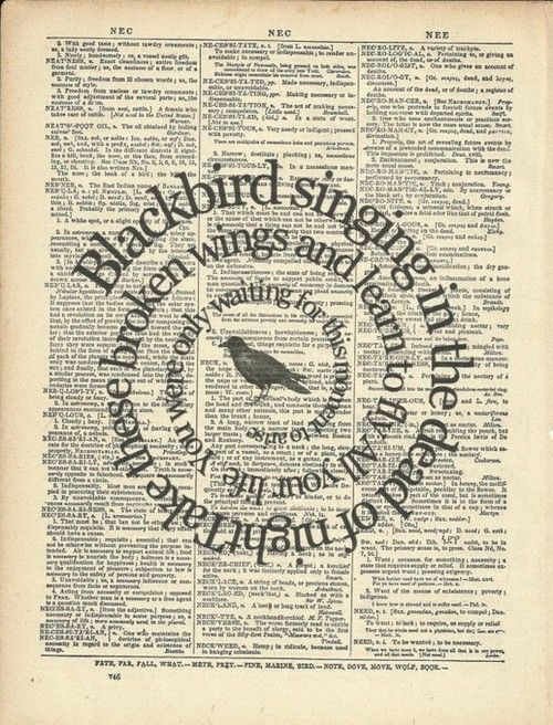 Blackbird singing in the dead of night Take these broken wings and learn to fly All your life You were only waiting for this moment to arise Blackbird, fly Blackbird, fly Into the light of a dark, black night