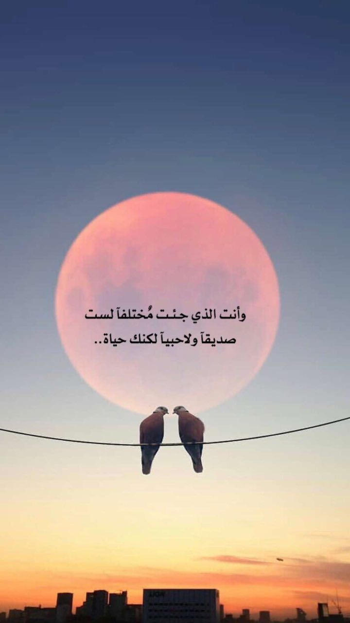 أحبك إنت نور عيوني Broken Promises Quotes Arabic English Quotes Photo Quotes