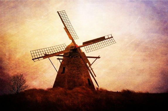 """""""When the Wind Blows"""" - Signert og nummerert foto"""