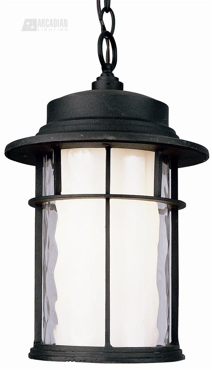 Craftsman Transitional Outdoor Hanging Light