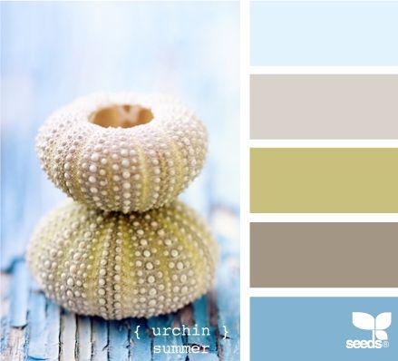 color palette.