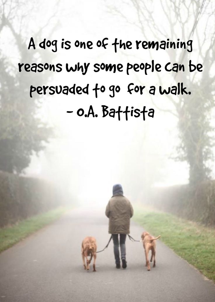 """""""A dog is one of the remaining reasons why some people can be persuaded to go for a walk."""" — O.A. Battista (www.fordogtrainers.com)"""