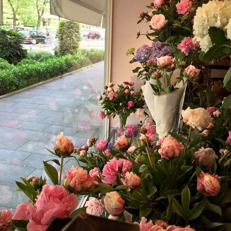 El escaparate de nuestra tienda en Ramón y Cajal 1, repleto de peonias de la cosecha de Bourguignon | Bourguignon Floristas #peonia #peony
