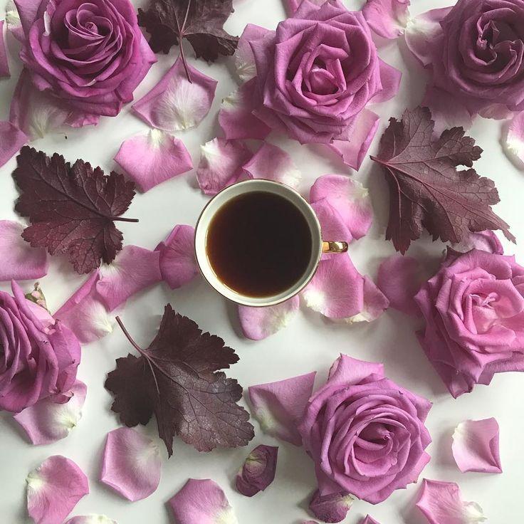 Coffee o'clock ☕️