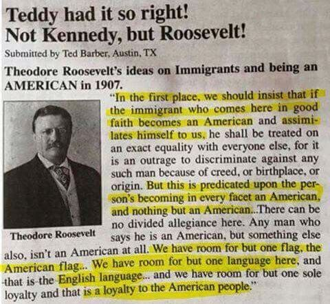 Teddy Roosevelt nails it on immigration!