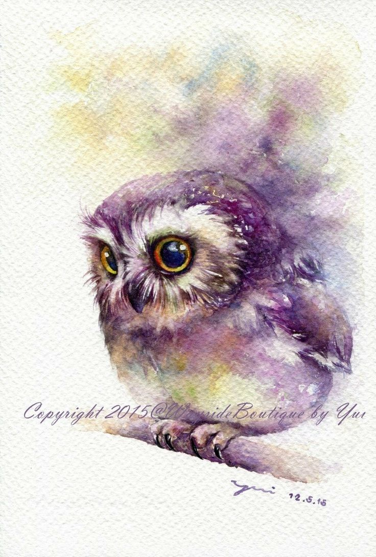 17 best Owl images on Pinterest | Owl watercolor ...