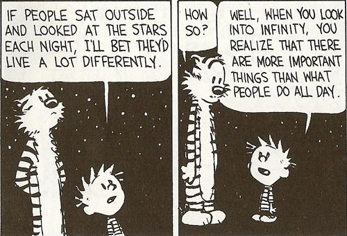 LifeThoughts, Words Of Wisdom, Stars, Life Lessons, Calvin And Hobbes, Inspiration Quotes, Comics Strips, True Stories, Wise Words