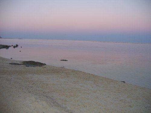 Marsa Alam - Novembre 2005 - Photo 147 : Album di foto - alfemminile