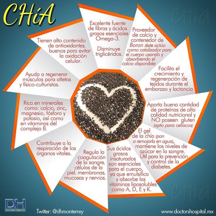 Infografia de la Chia - Doctors Hospital - Artículos de Interes