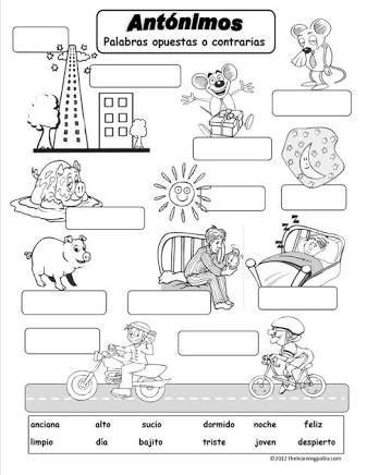 Resultado de imagen para actividades de antonimos y sinonimos para niños