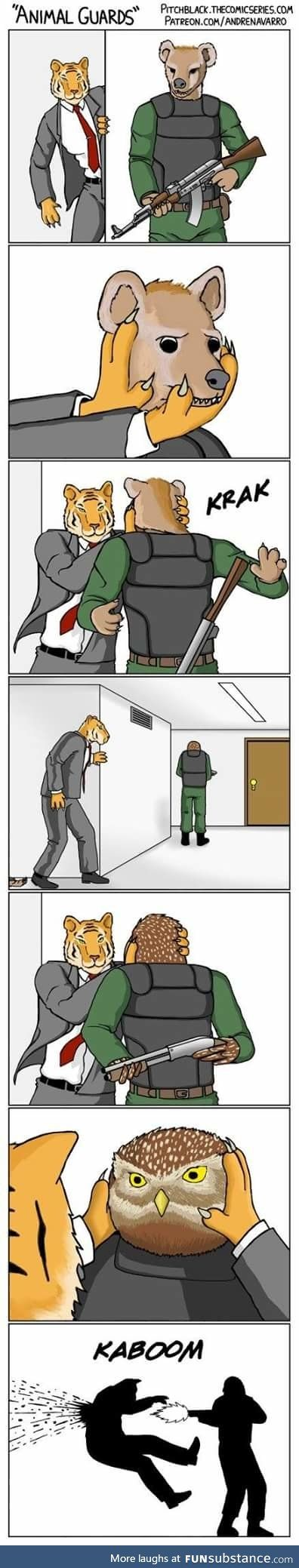 Never f*ck with the owl