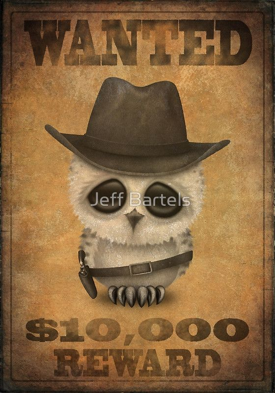 Cute Baby Owl Cowboy Vintage Wanted Poster by Jeff Bartels