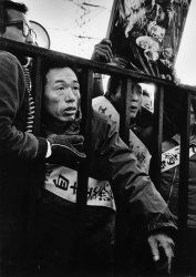 Protestors at the gates of the Chisso factory: Minamata disease is caused by severe mercury poisoning. It was first discovered in Minamata city in Kumamoto prefecture in 1956. It was caused by the release of methylmercury in the industrial wastewater from the Chisso Corporation's chemical factory, which continued from 1932 to 1968. While deaths continued for 36 years, the government and company did little to prevent the pollution. In 2004, Chisso was ordered to clean up its contamination.