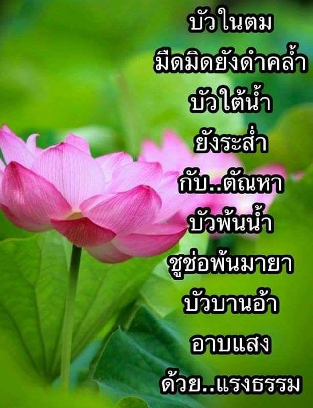 ป กพ นโดย Sandthipe Duangcharoen ใน ธรรมะก อนนอน