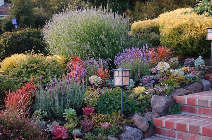 Great garden ideas from the west s best gardens gardens for Front yard landscaping plants and shrubs