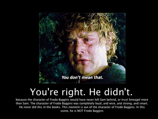 Why Does Frodo Carry The Ring