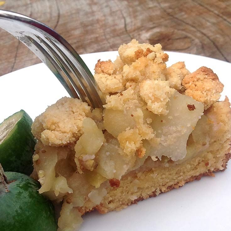 A different take on an old classic with this paleo feijoa, and apple crumple recipe. Makes a wonderful dessert fresh out of the oven. Ingredients 4 Granny Smith Apples 1 Cup Feijoa Pulp 1 Tbsp Water 1 Cup Almond Flour/Almond Meal ½ Cup Tapioca Flour + 1 Tbsp ½ Cup Coconut Flour + 1 Tbsp …