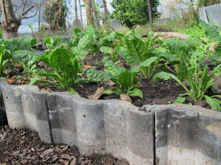 15 brilliant garden edging ideas you can do at home