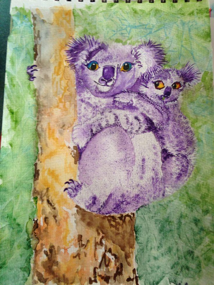 Koala Study #2