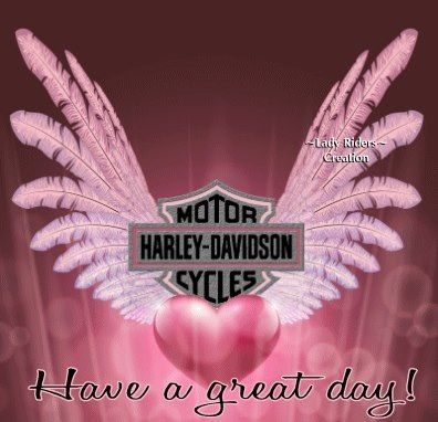 Harley Pink Angel Wings. Repinned by An Angel's Touch, LLC, d/b/a WCF Commercial Green Cleaning Co., Denver's Property Cleaning Specialists! http://angelsgreencleaning.net