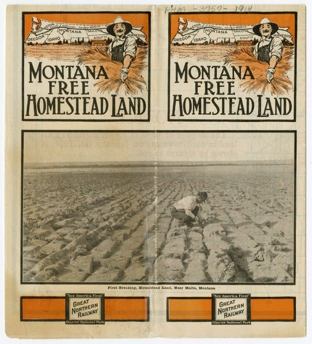 montana free homestead land 1914 western design