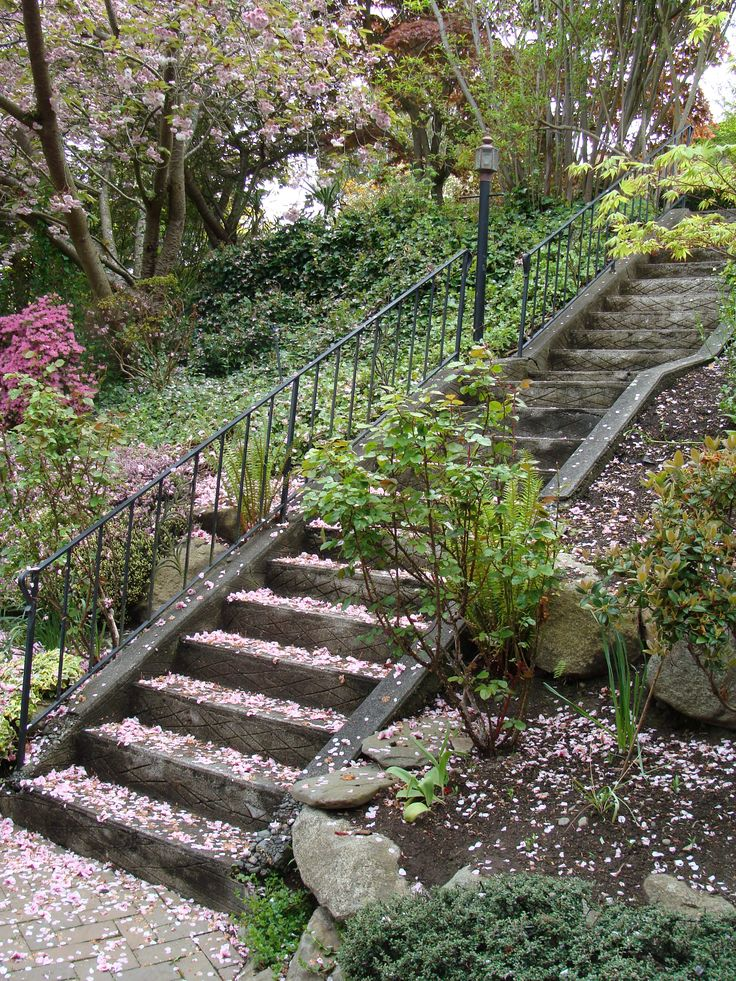 Garden Design On Steep Slopes 60 best slope / downhill garden images on pinterest | landscaping