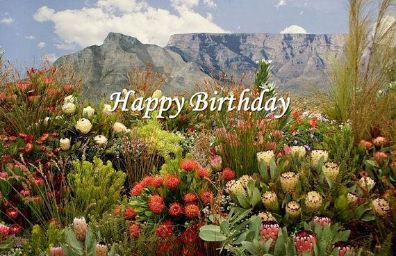 Happy Birthday Floral Display Card Printable Digital Photo South African Flowers Botanical Gardens South Africa