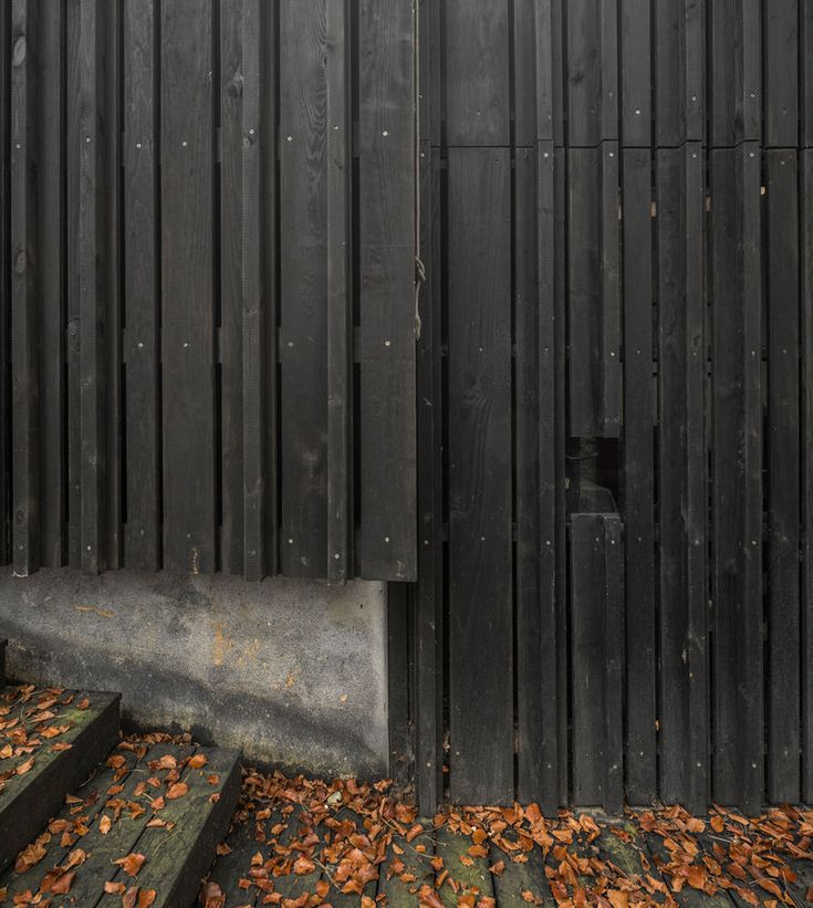 Black Wood House by Marchi Architects.