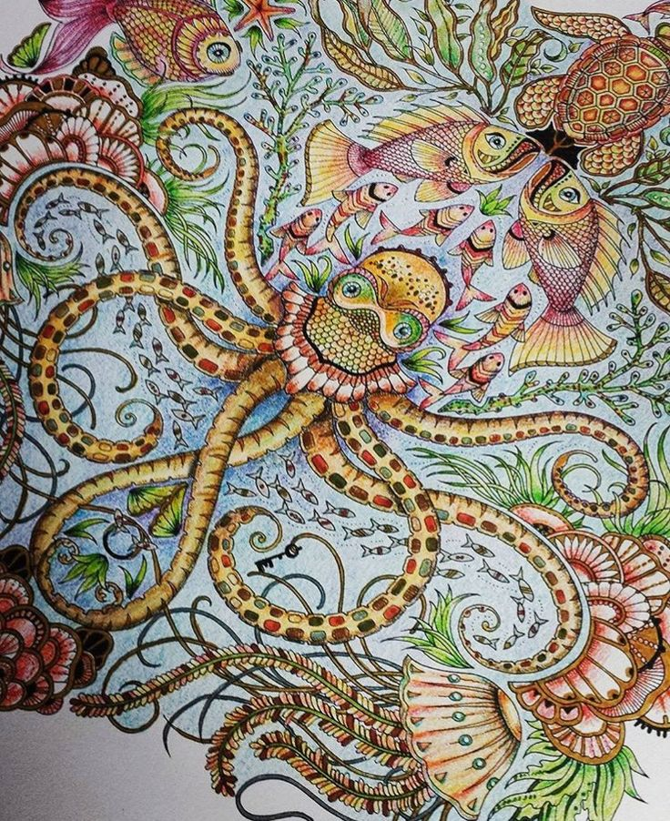 LostOcean Page 3 Octopus Fish Adult ColoringColoring BooksSecret GardensPrismacolorJohanna Basford Coloring BookColored PencilsJohanna Secret