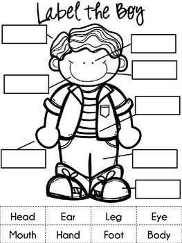 Label The Boy Esl Parts Of The Body Body Parts