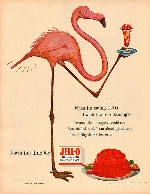 Flamingos like Jell-O.  Who knew? (1954)