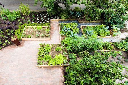 Buurvrouw Aartje stelde voor onze gezamenlijke voortuin te veranderen in een makkelijke moestuin. EEN MOESTUIN? Hoe verzint je het! Maar als tuinontwerpster ging ik de uitdaging aan.